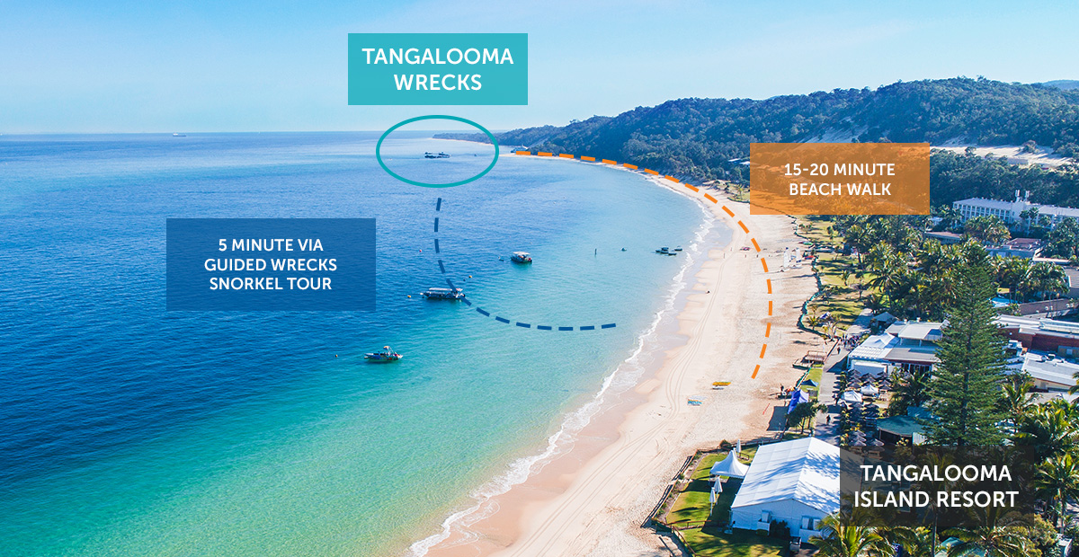 Where are the Tangalooma Wrecks?