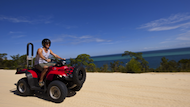 Tangalooma Activities