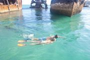 Guided Snorkelling Tours