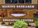 Why not stop in at the Marine Education & Conservation Centre to learn all about the animals that call Moreton Bay home.